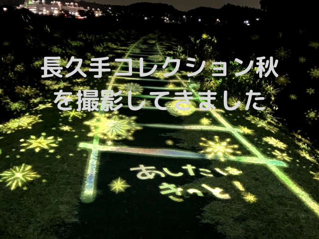 長久手コレクション秋2020 (1)