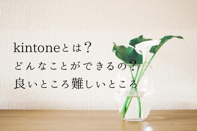 kintoneアイキャッチ